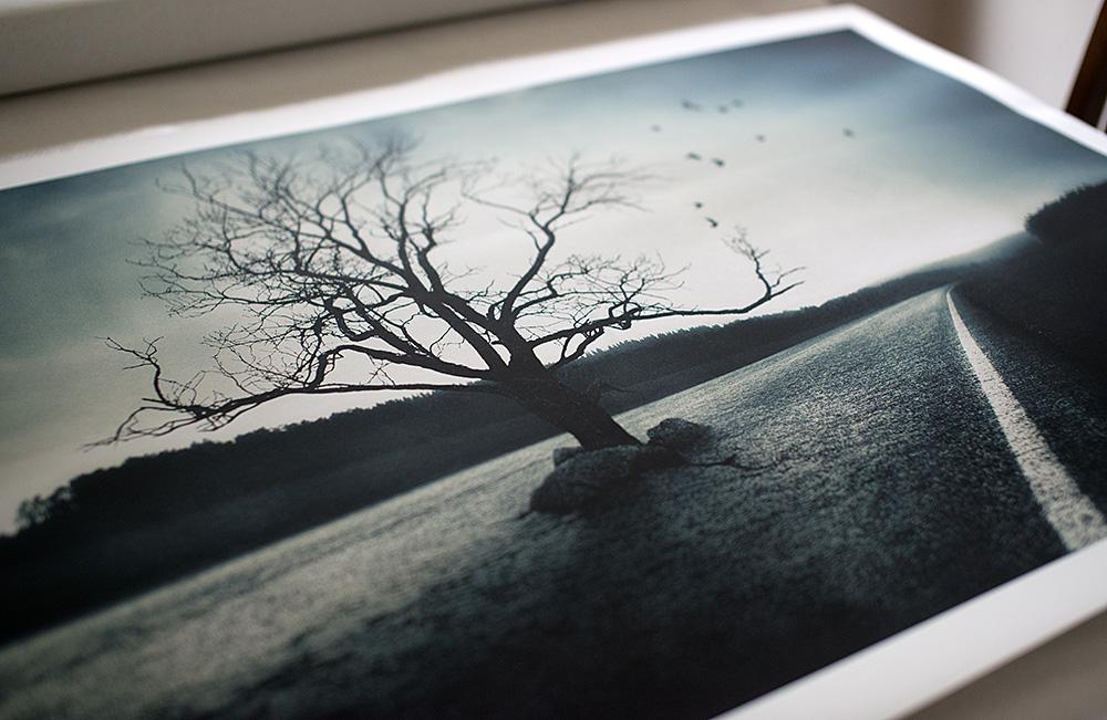 mikko-lagerstedt-print-giveaway.jpg
