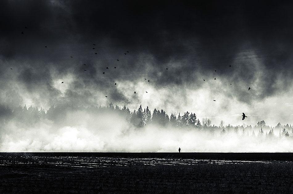 Still standing.. - Mikko Lagerstedt
