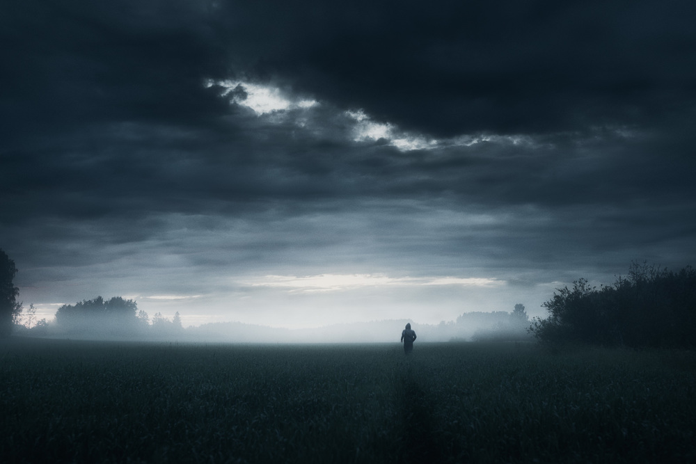 In the Silence - Mikko Lagerstedt - 2014