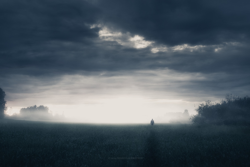 In the Silence II - Mikko Lagerstedt - 2014