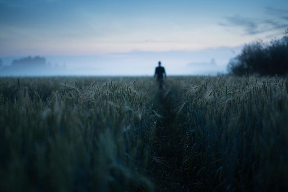 Path - Mikko lagerstedt - 2014