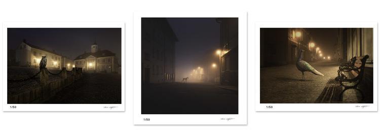 Night Animals.jpg