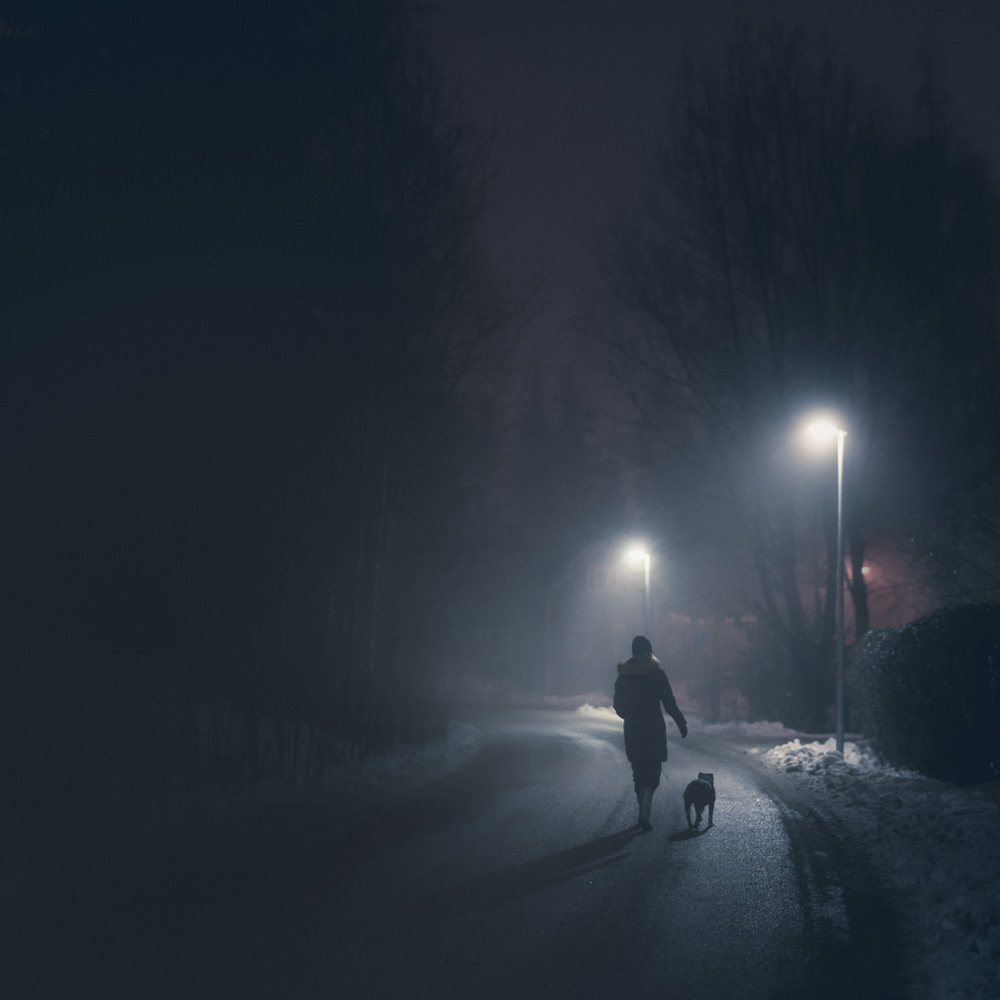 Mikko-Lagerstedt-Night-Walk.jpg