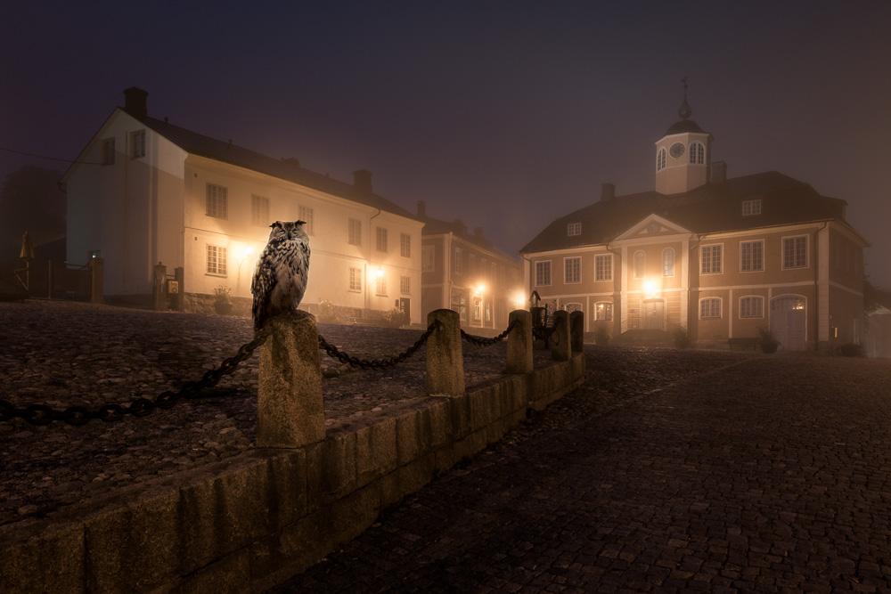 Mikko-Lagerstedt-Owl.jpg