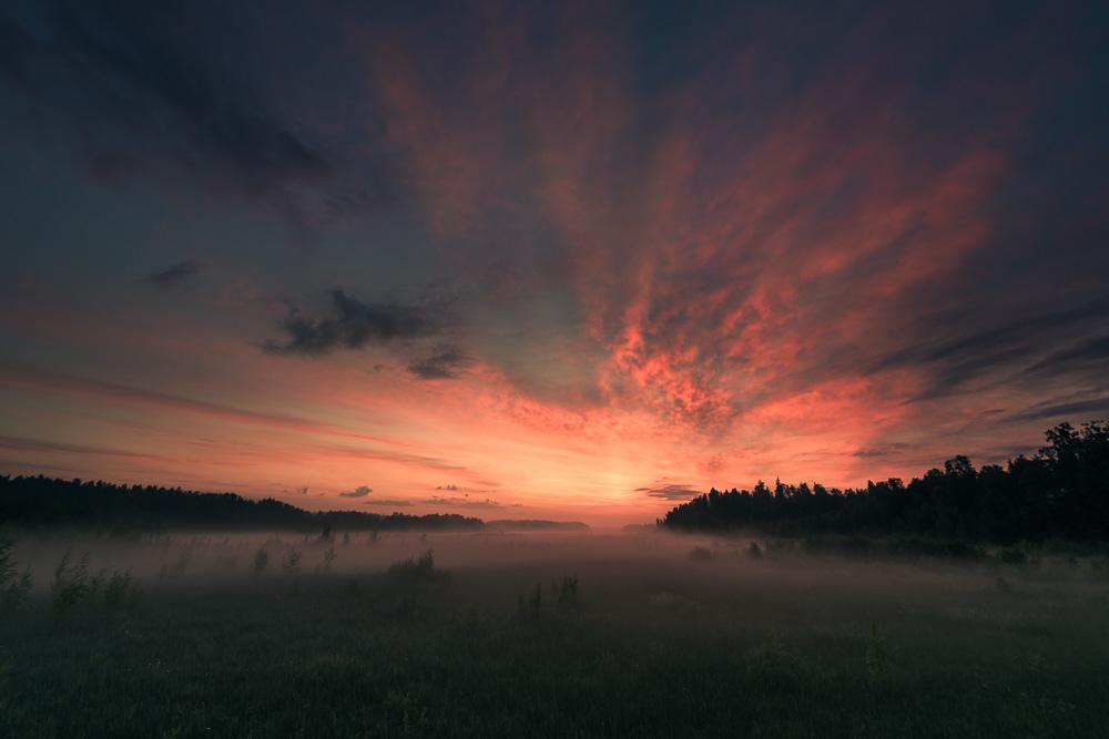Mikko-Lagerstedt-Dawn.jpg