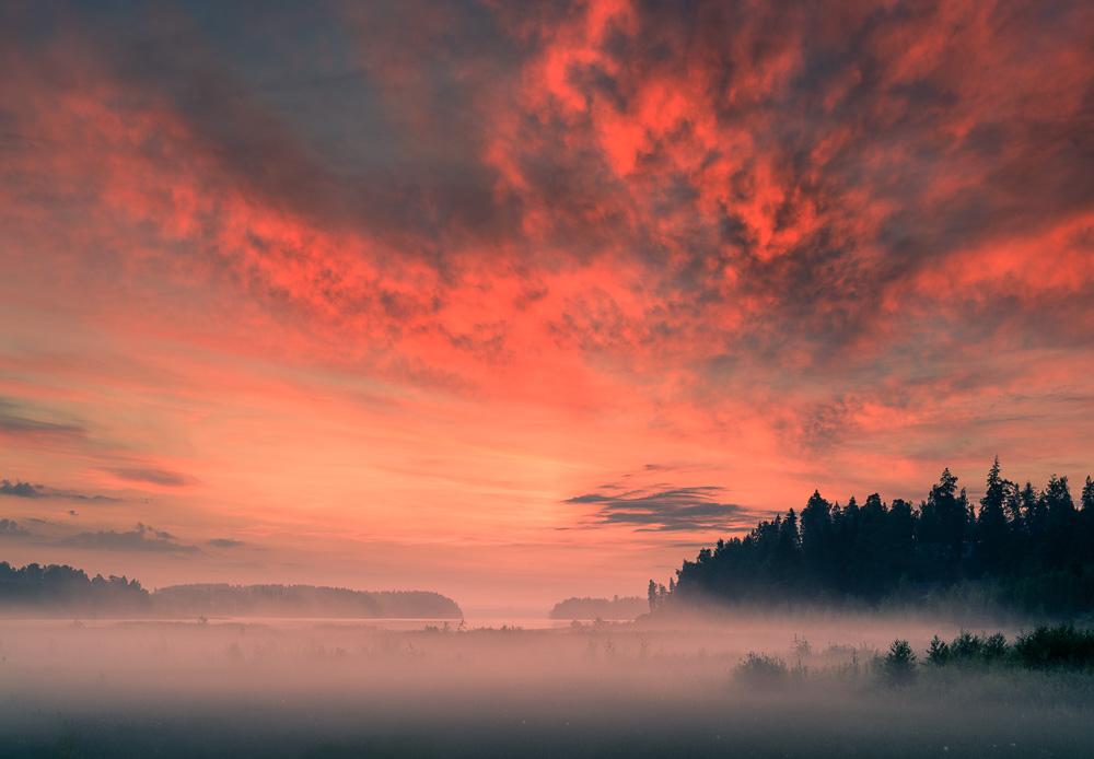 Mikko-Lagerstedt-DawnII.jpg