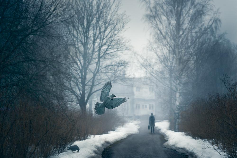 Mikko-Lagerstedt-Dark-Times.jpg