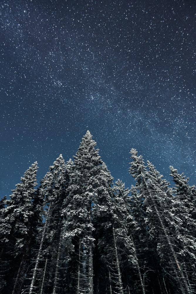 Mikko-Lagerstedt-Frozen.jpg