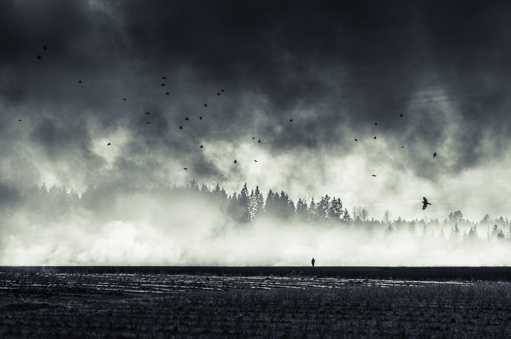 Mikko-Lagerstedt-Still-Standing.jpg