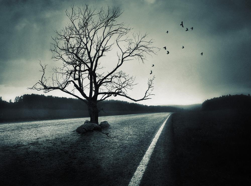 Mikko-Lagerstedt-Detour.jpg