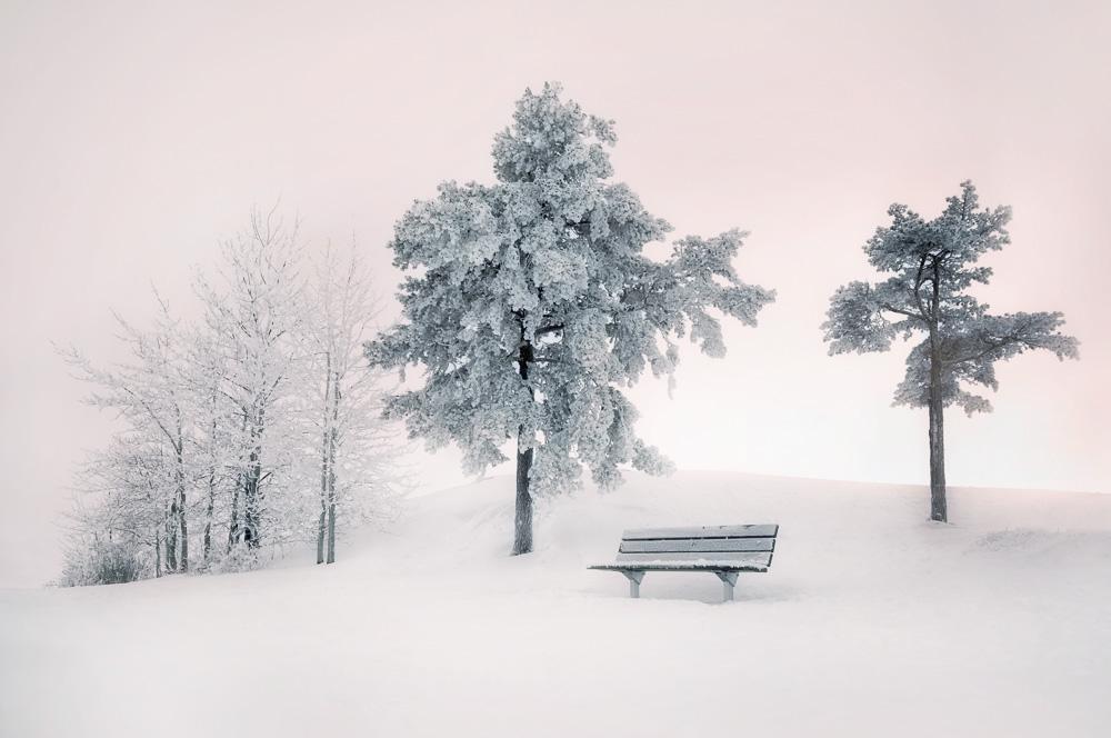 Mikko-Lagerstedt-Winter-Silence.jpg