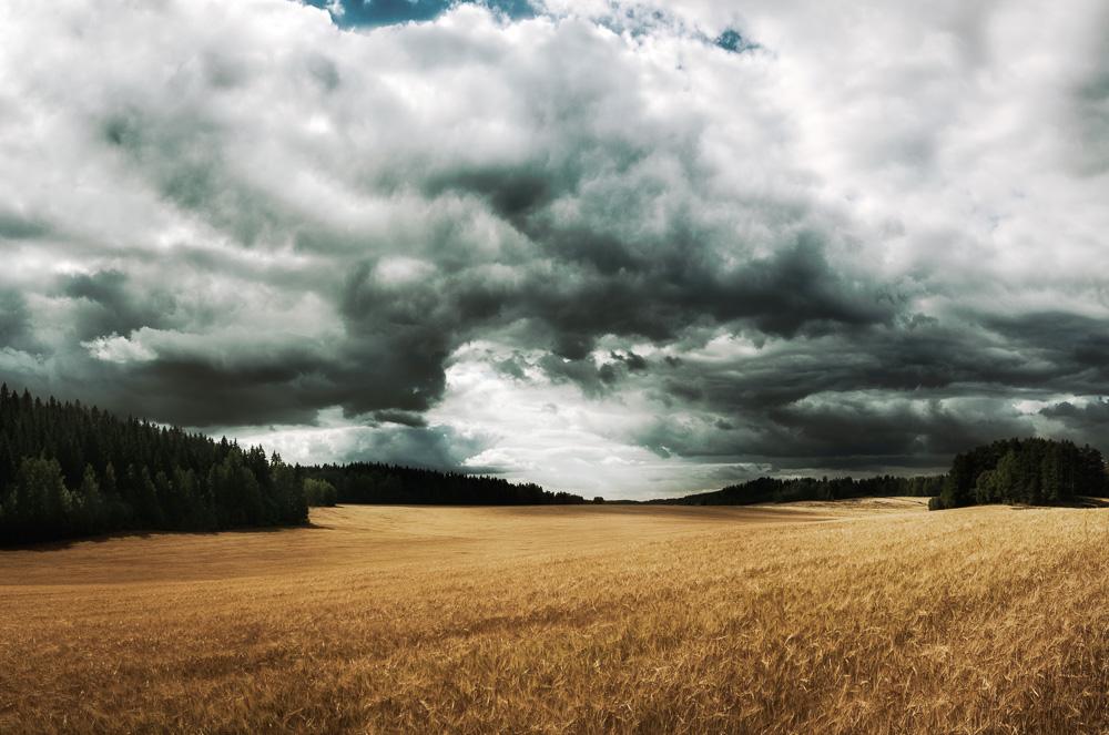 Mikko-Lagerstedt-Dark-Field.jpg