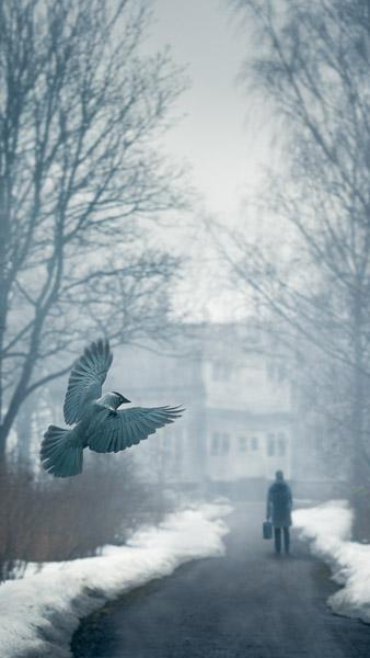 Mikko-Lagerstedt-9.jpg