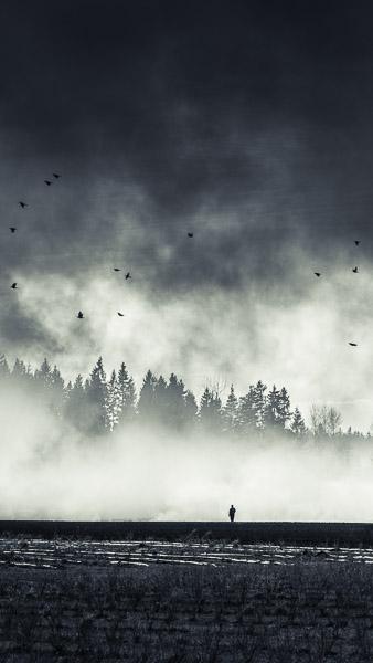 Mikko-Lagerstedt-7.jpg