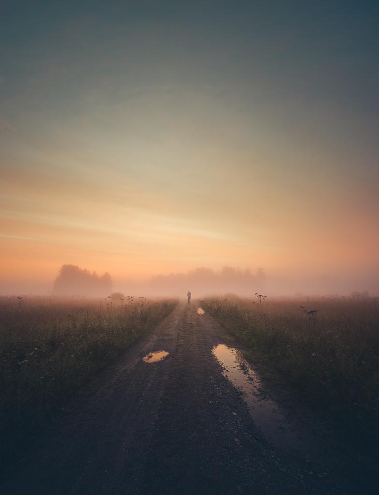 Mikko Lagerstedt –Summer Morning Dream –Kerava, Finland 2016