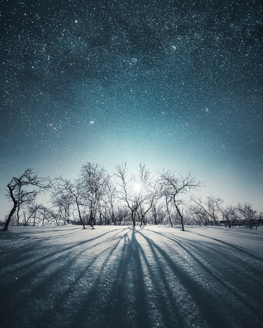 Mikko Lagerstedt - Long Shadows