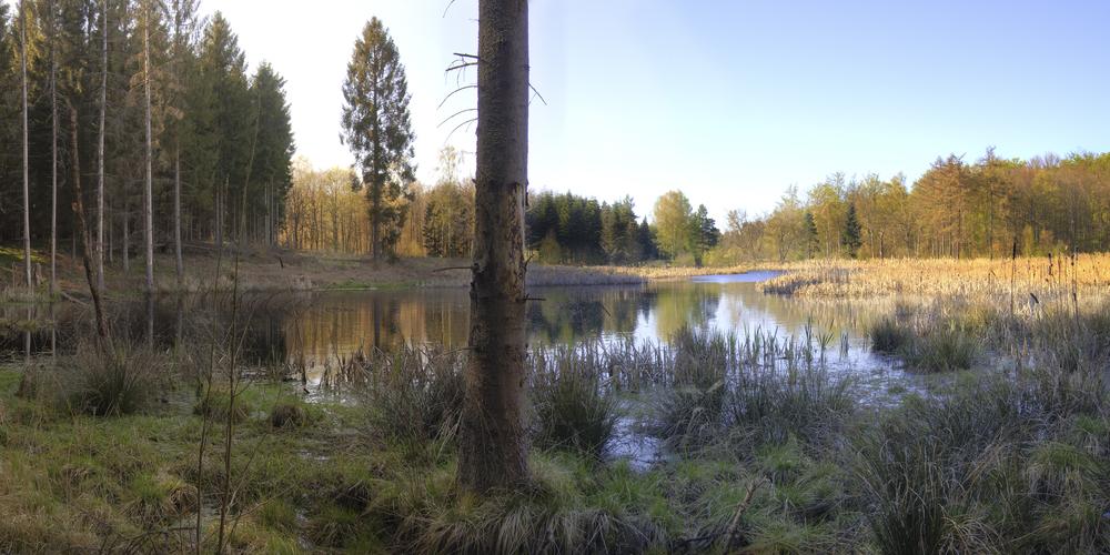 2009-04-25_hdr2.jpg
