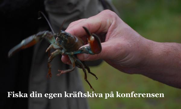 Kräftskiva i Hjortseryd