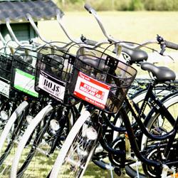 cyklar_x250.jpg