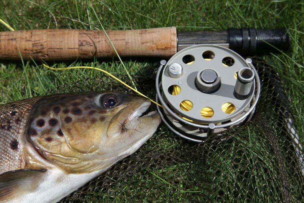 Fiske till våren på Hjortseryd