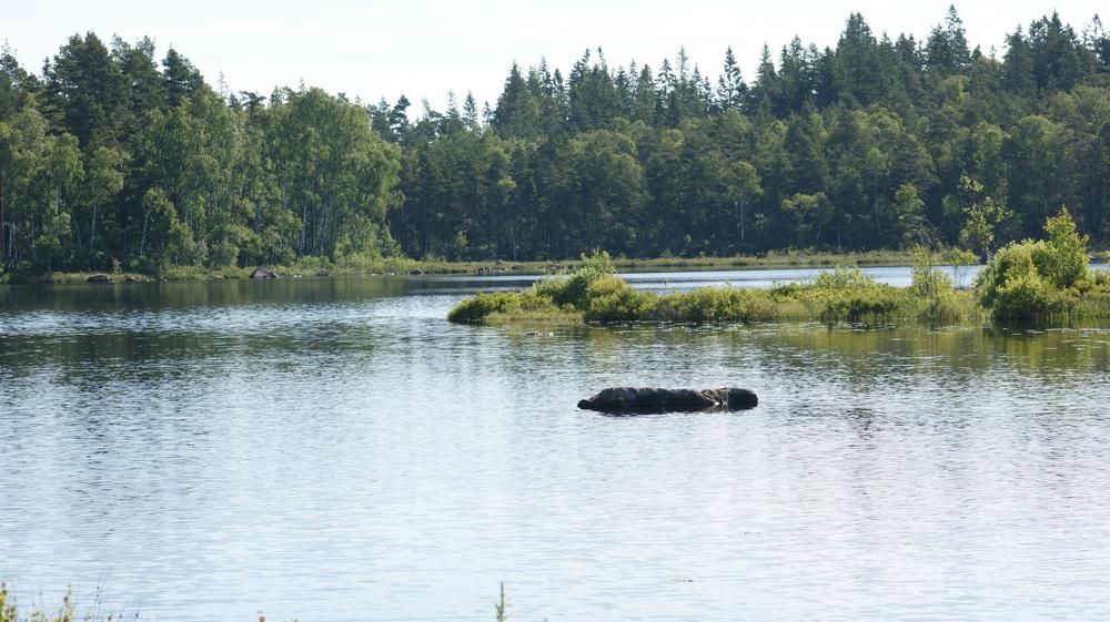 Hjortserydssjön