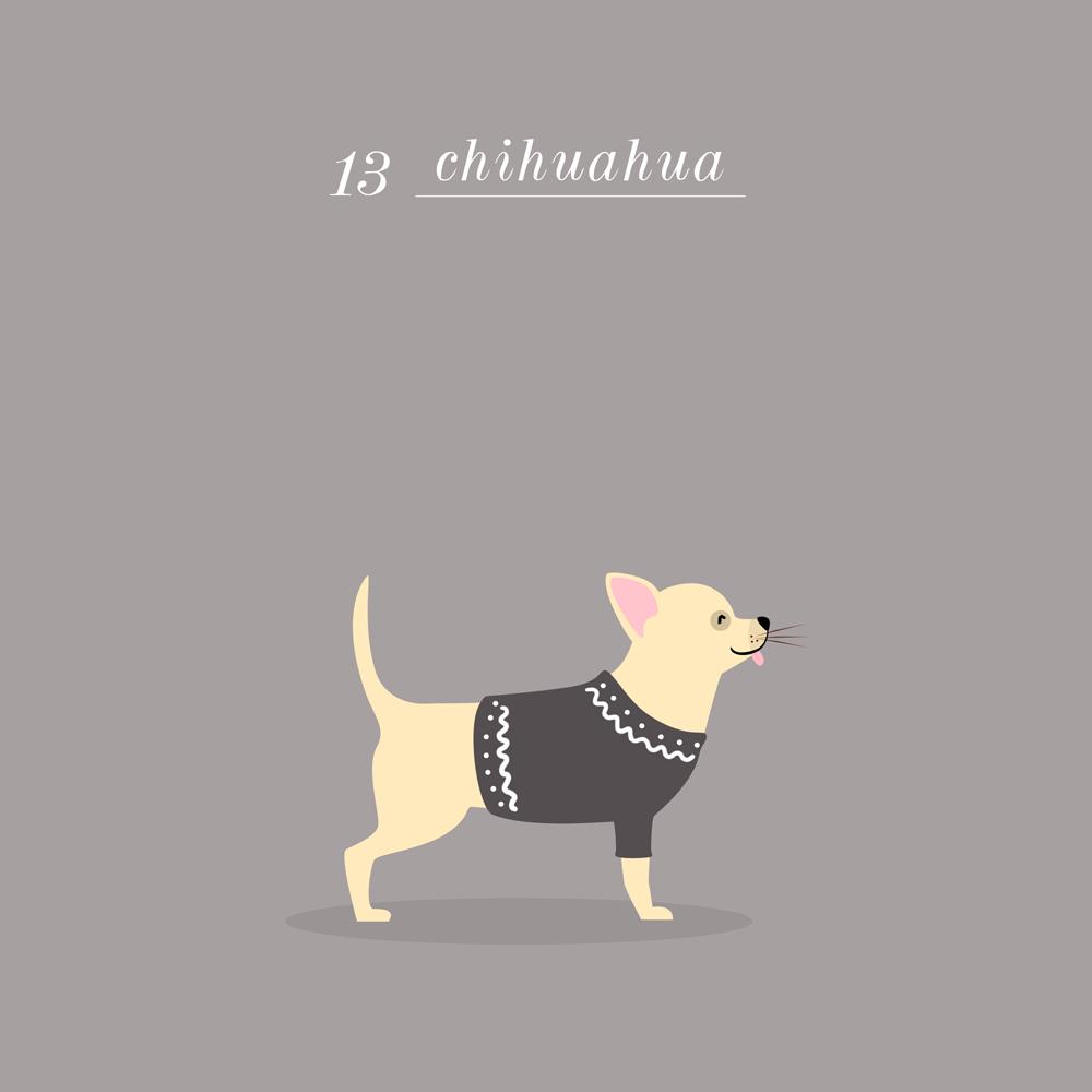Charlene Girodet-Chihuahua