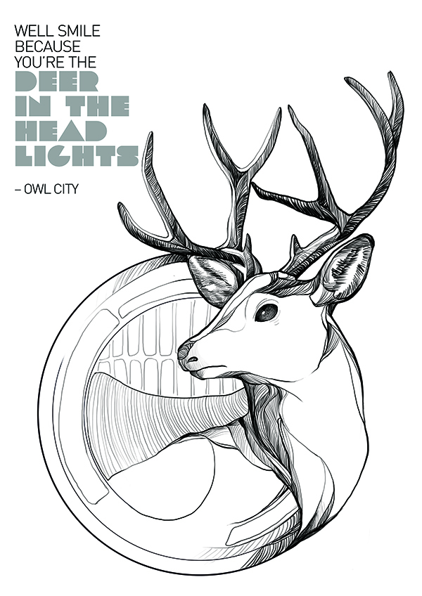 Deer_headlights_cover.jpg