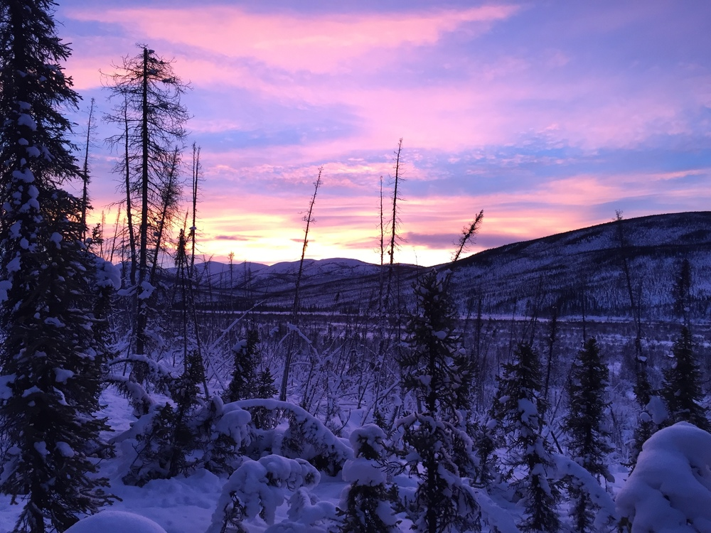 Sunset on the trapline