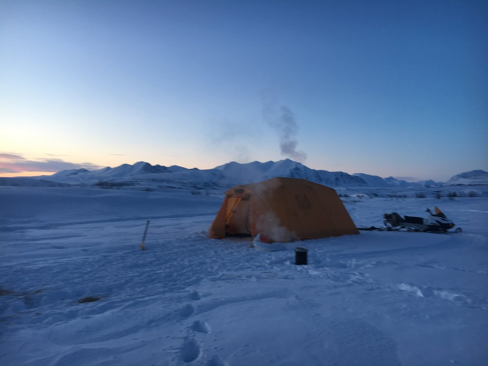 Camp site on the Denali Highway