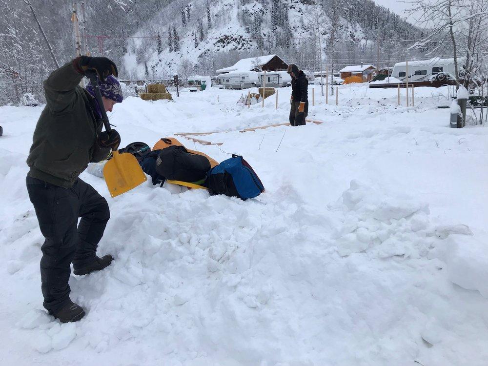 Kalyn shoveling in the ent rance