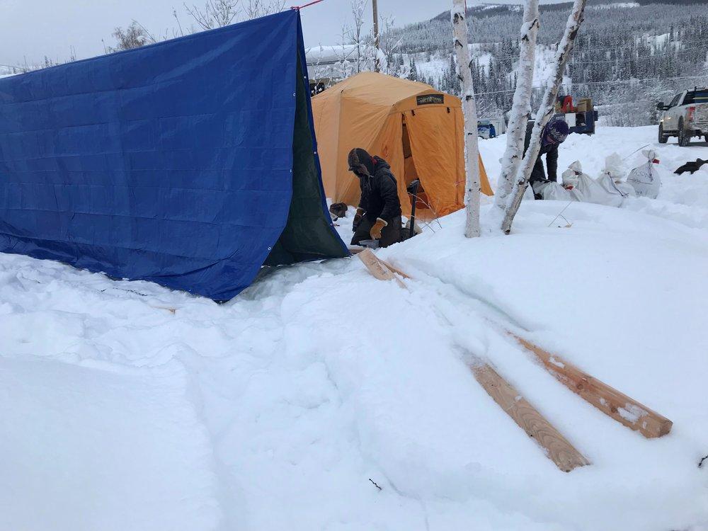 43 dog tent.jpg