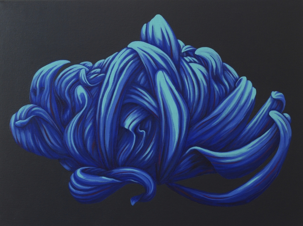 """Midnight glow   This luminous chrysanthemum, surrounded by a very dark gray, appears to glow as though the flower were lit by the moon on a dark night.  acrylic painting on 18"""" x 24"""" (x 1.5"""") gallery wrapped canvas  $1200.00"""