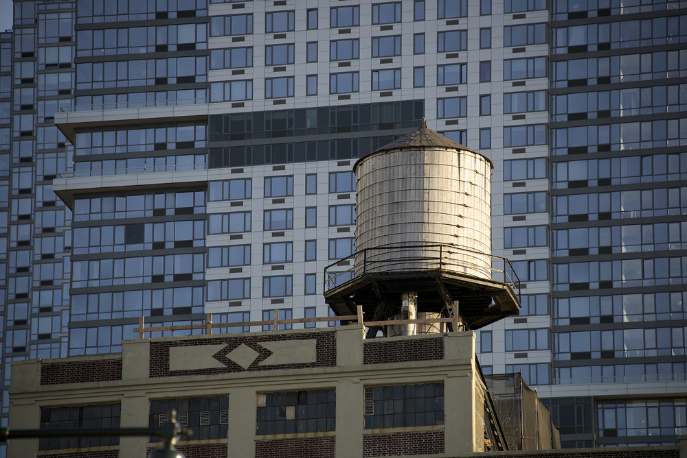 NYC_WT  007.jpg