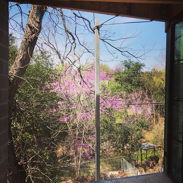 All three views from the 2nd story master suite porch at our Cherrywood project are graced with amazing spring color. Can't wait to see this next spring when it's all wrapped up. Thanks to @glauserbuilding for keeping a tidy job site and outstanding construction quality.