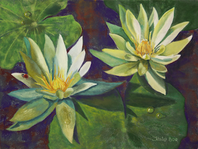 WATER LILIES @ GUEST