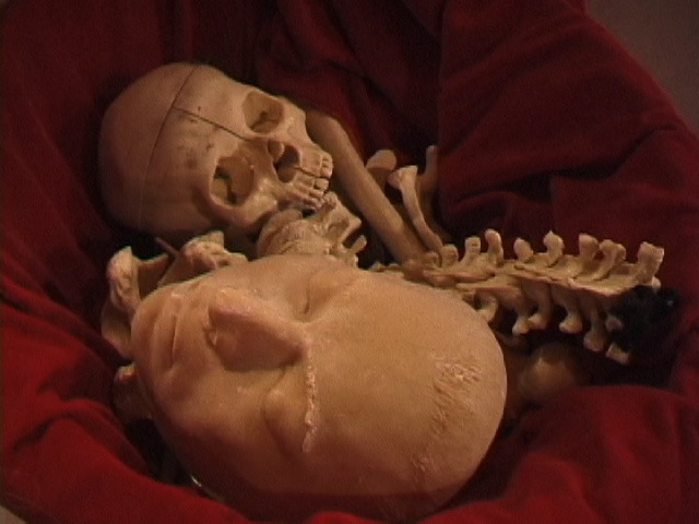 Bone Basket (video still)