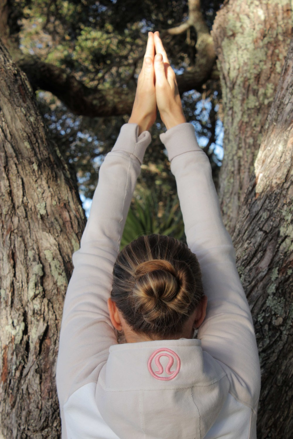 Yoga Auckland_Golden Yogi_Yoga Tree, by a tree ... in Takapuna of course