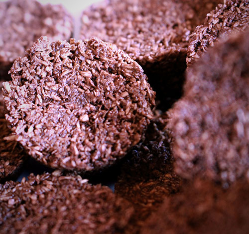 Raw Chocolate Macaroons at Golden Yogi