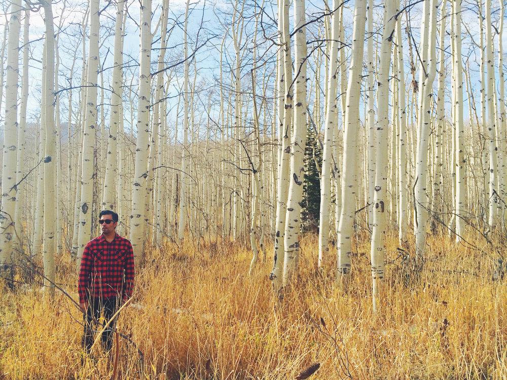 baki in birch forest.jpg