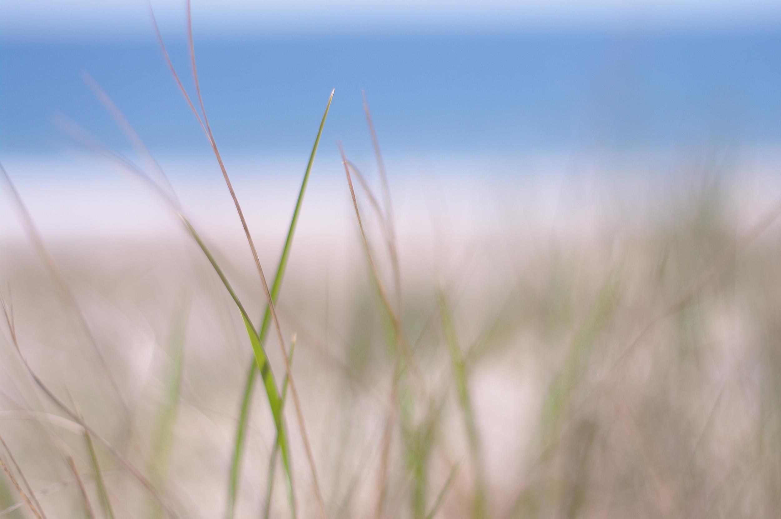 beachday-300dpi-1296