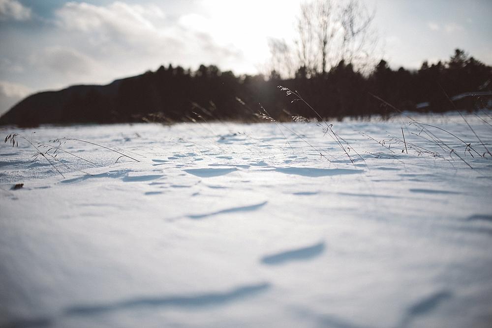 2015-01-12_0005.jpg