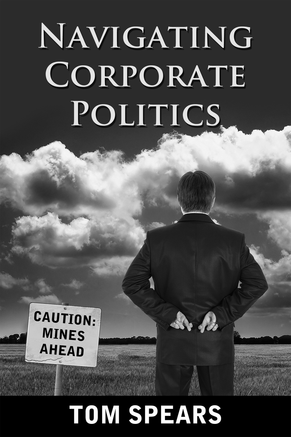 Click on the image to see how you can get a copy of this business politics primer