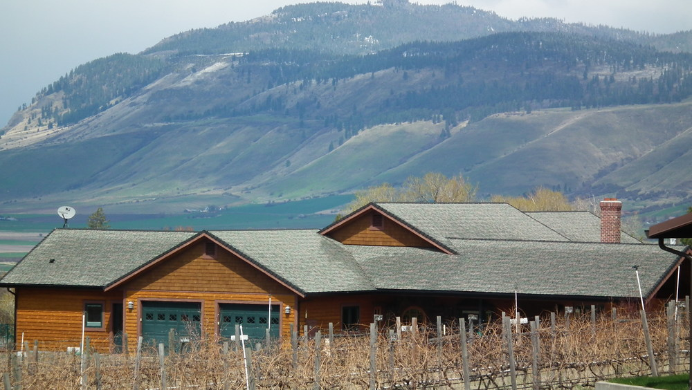 The Vineyard Home - with Mt. Harris in the background
