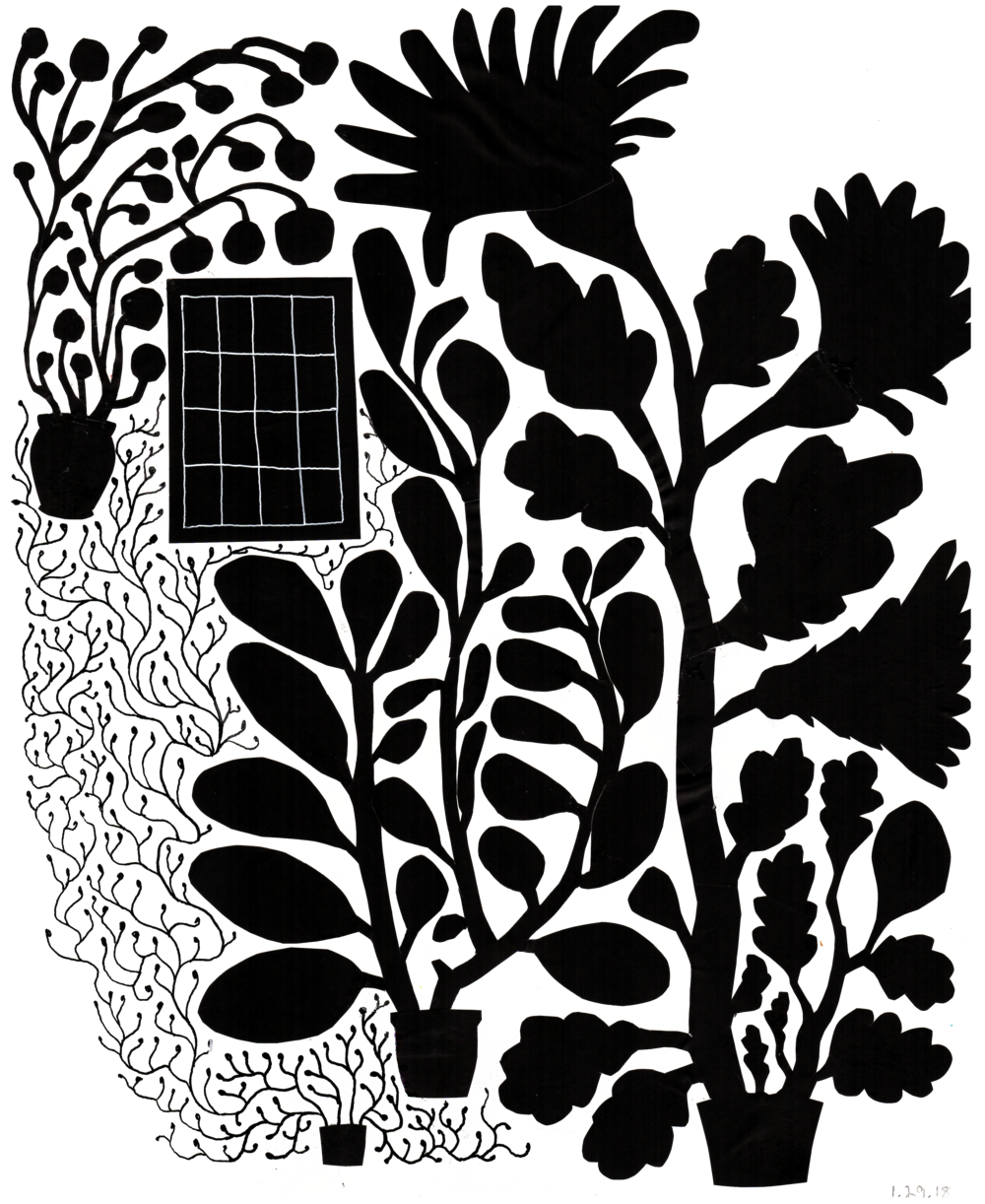 vicky_katzman_cut_paper_houseplants