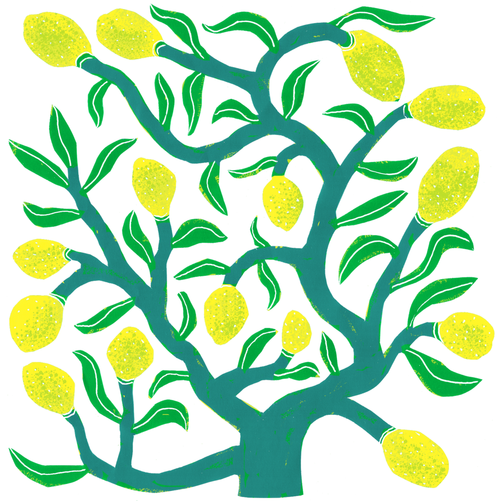 lemon+tree.png