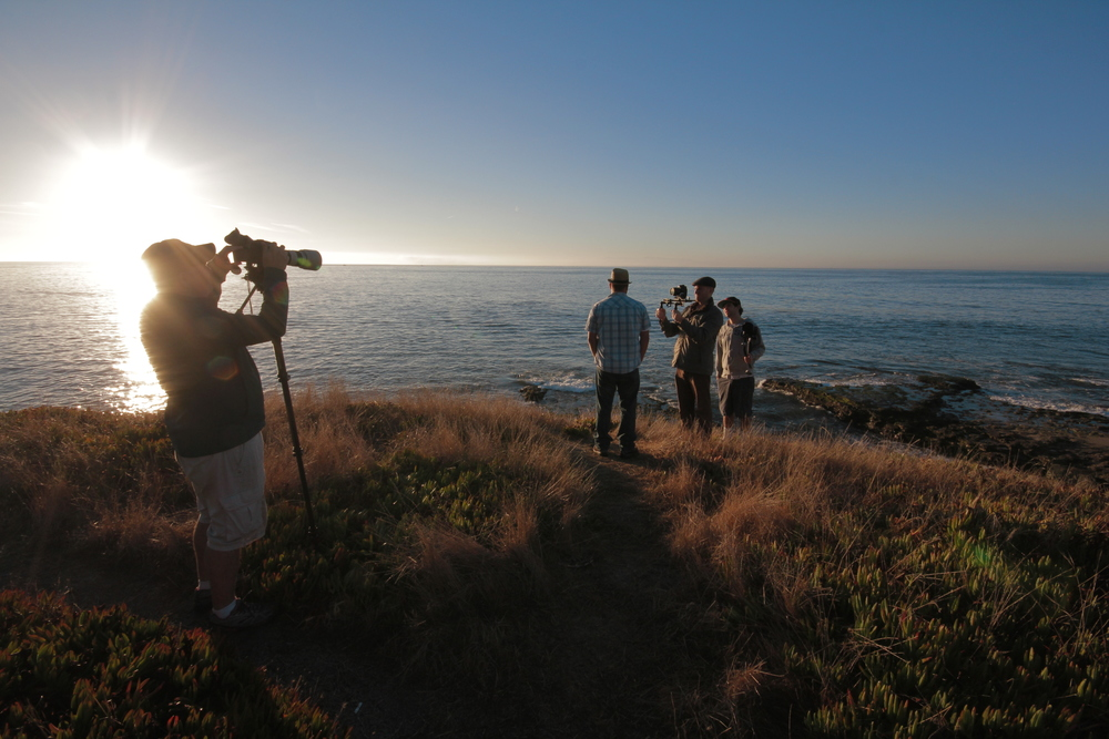 "Sunrise shoot for Cede's ""Not My Own"" music video"