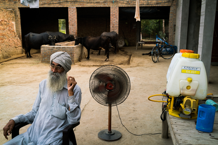 Farmer Gurmar Singh, 67, rests in his home in the farming village of Mari Mustafa, September 29, 2016.
