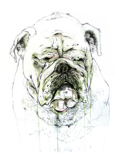 Gijs Kast  Bulldog  50 x 70 cm   Inquire