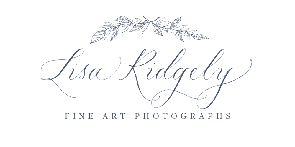 Lisa Ridgely Photography