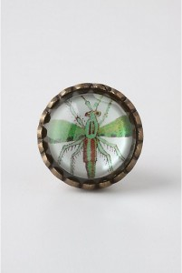 and totally adorable knob (also anthropologie)